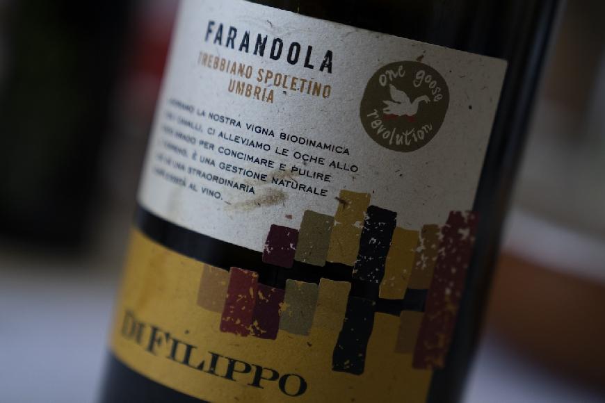 Trebbiano Spoletino Farandola, Di Filippo